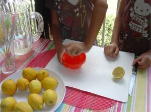 Juice Lemons