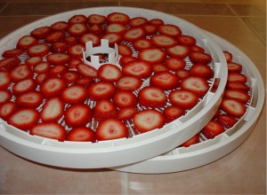 Strawberries Ready for the Dehydrator